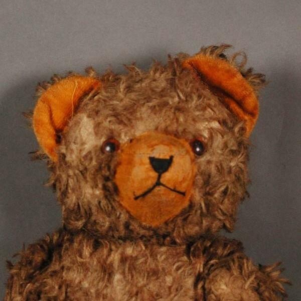 Teddy Bär 1950 - 1955