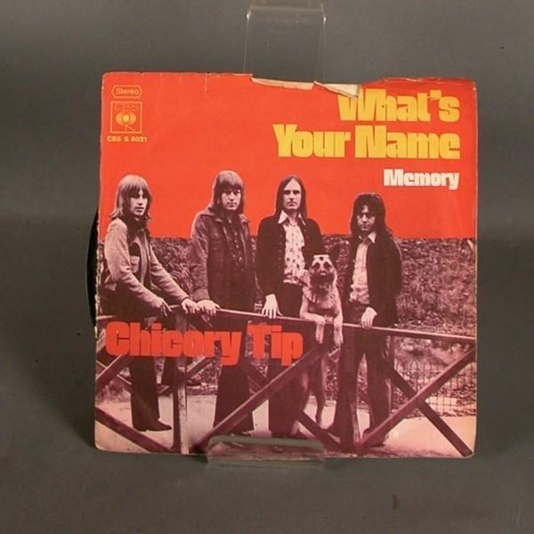 Single. Vinyl. Chicory Tip...