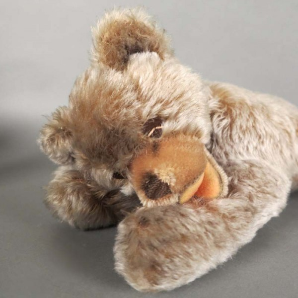 Steiff bear Zotty with...